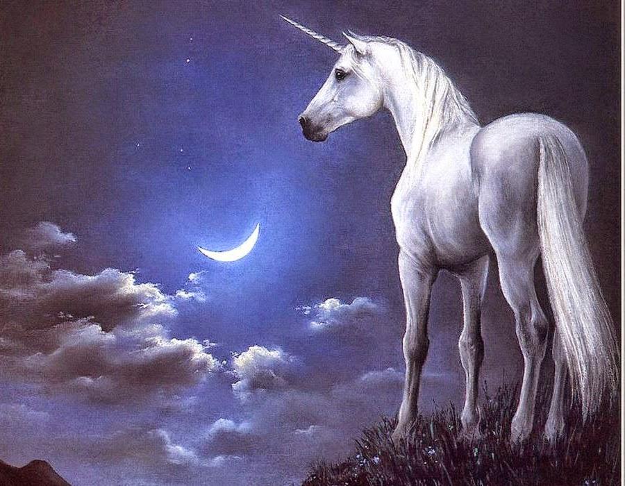 unicornioquintaesencia